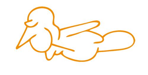 siebenzahl vogel